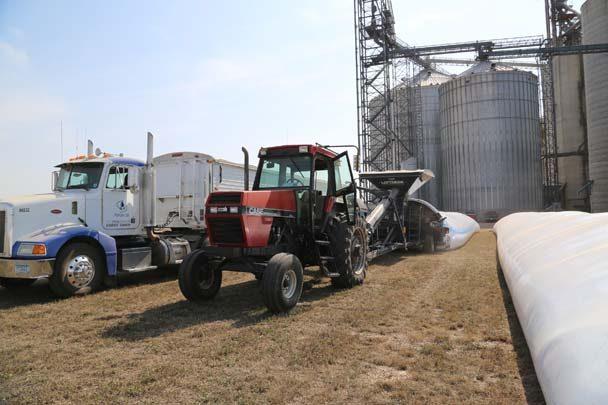 Loftness-grain bagging Glenwood MN