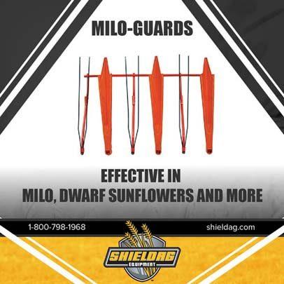 SHD_Milo_Guards